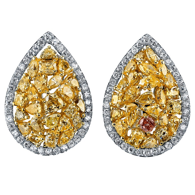 Natural Fancy Colored Diamond Earrings.
