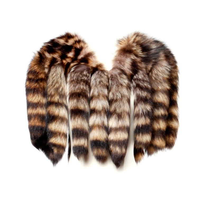 Vintage Raccoon Fur Tail Cape At 1stdibs
