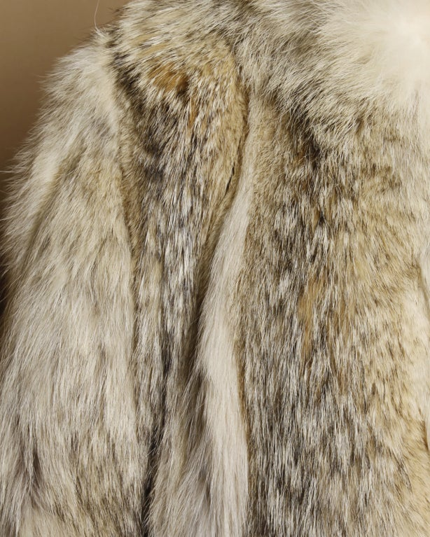 Vintage Coyote Fur Coat with Appraisal 3