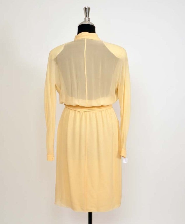 CHANEL Sheer crepe shirtdress with pleated waist belt in nude 2