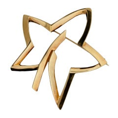 Tiffany & Co. Paloma Picasso Star Brooch