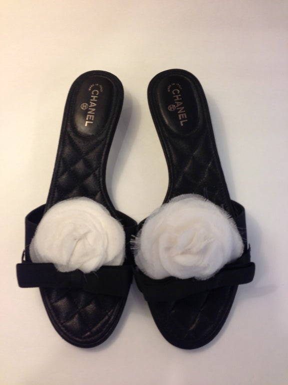 Chanel Kitten Heel With White Camellia At 1stdibs