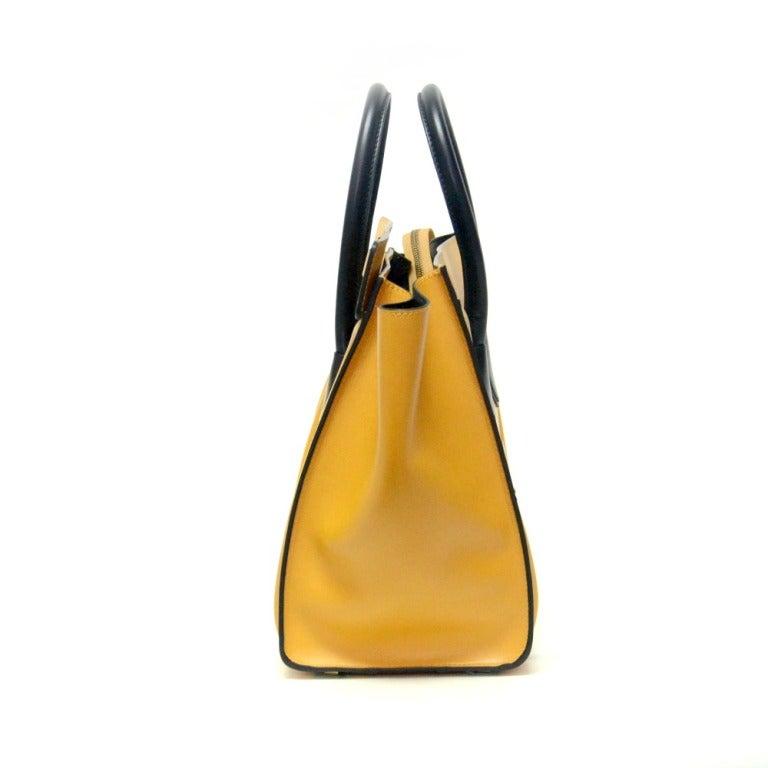 Hermes Celine Mini Luggage 2