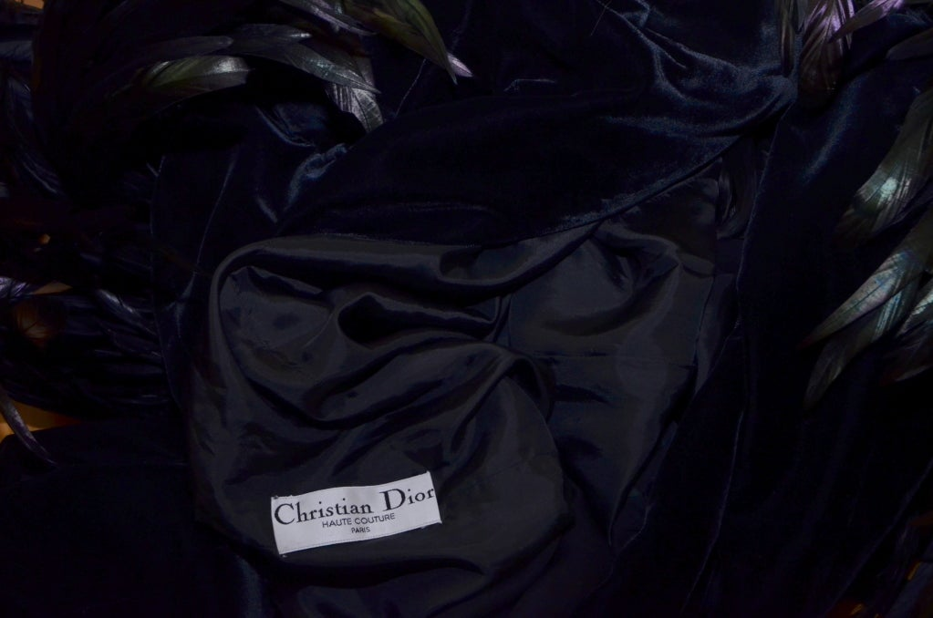 Christian Dior Haute Couture Cockerel Feathers Velvet Dress 9