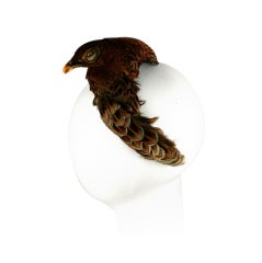 Victorian Taxidermy Hawk Headpiece