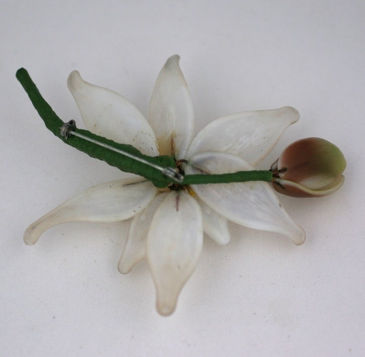 Speciman Water Lily Brooch 2