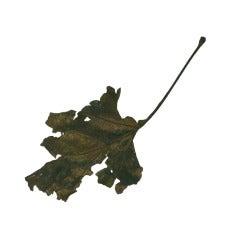 Massive Cire Perdue Bronze Leaf, John Iverson