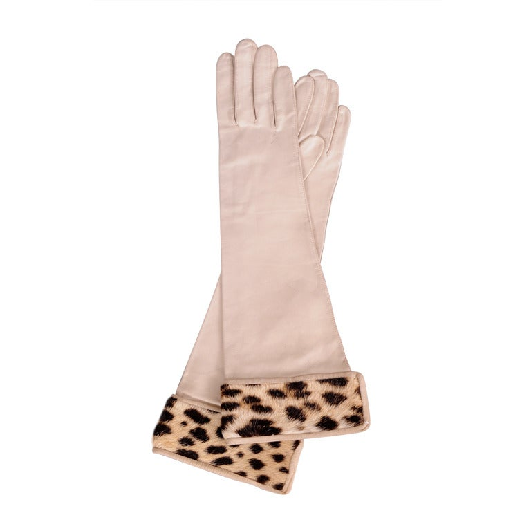 Leopard & Leather Gloves