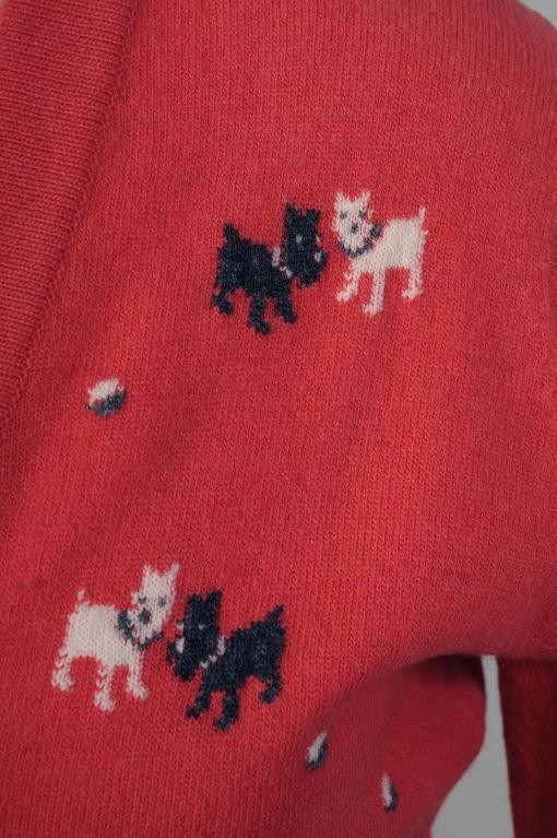 Red Pringle Sweater,  Scottie & Westie Dogs For Sale