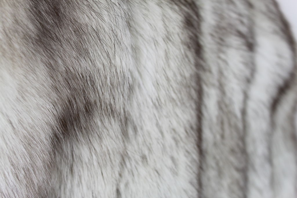 1980's Silver Fox Fur Coat image 9