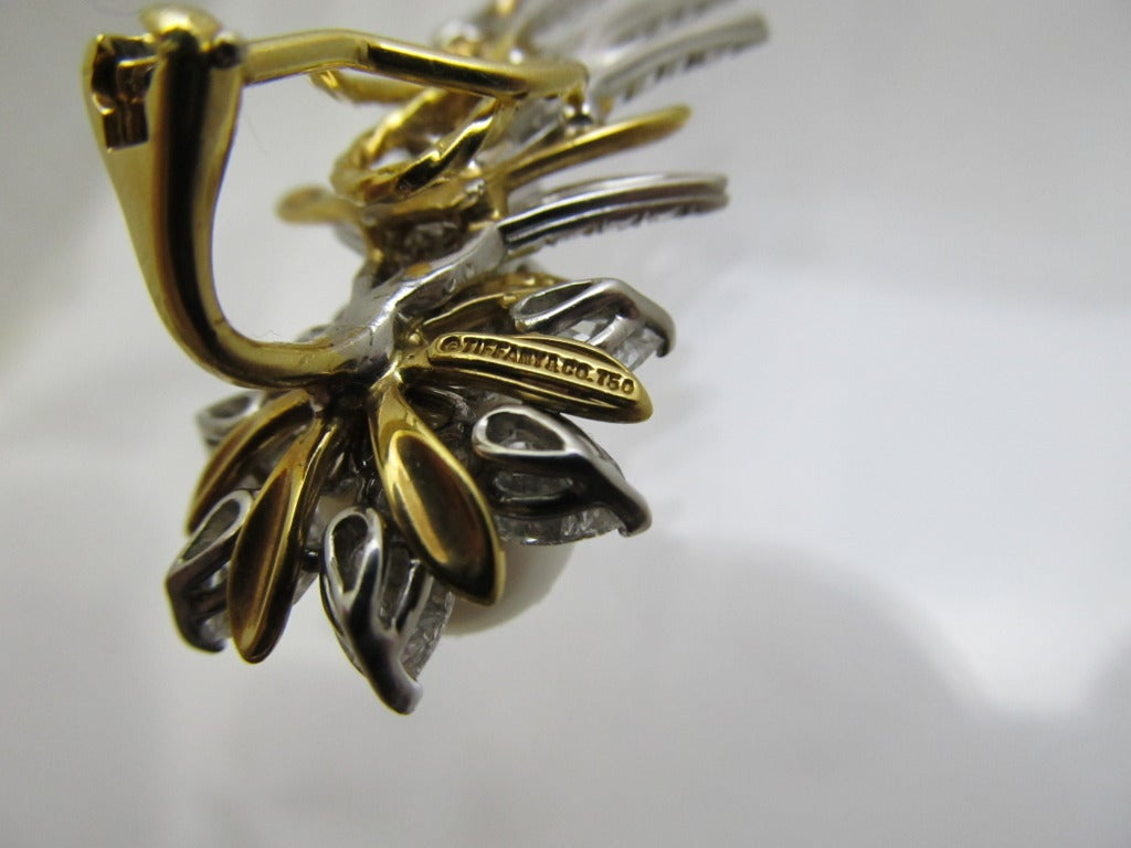 Tiffany & Co. Jean Schlumberger Flame Ear Clips 5