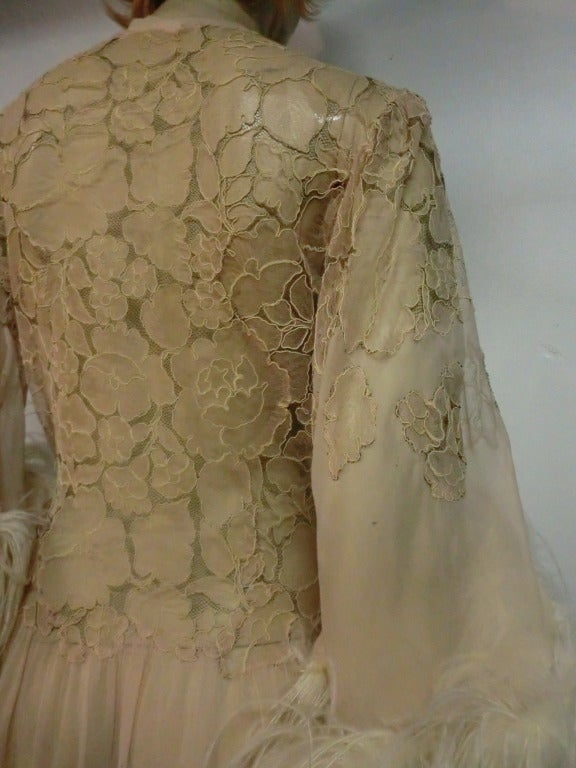 1920's Silk Lace and Chiffon Negligee w/ Ostrich Feather Trim 6