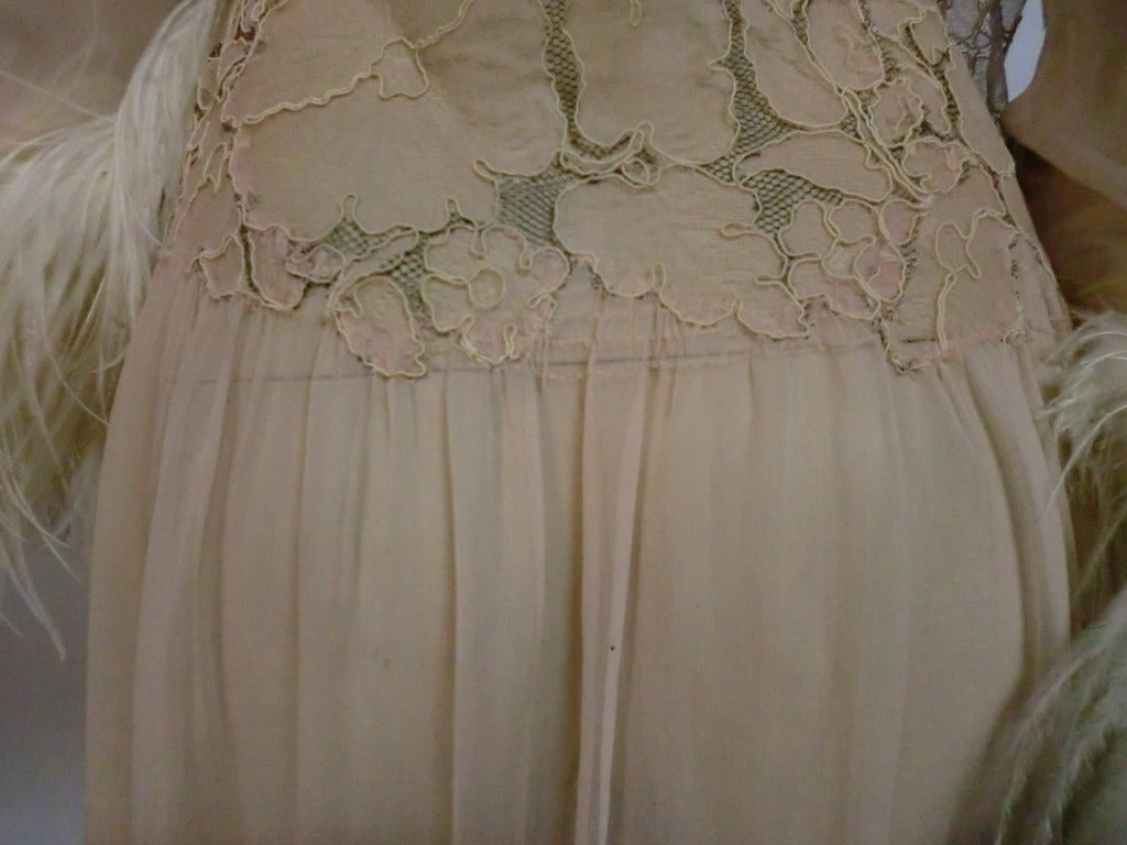 1920's Silk Lace and Chiffon Negligee w/ Ostrich Feather Trim 8