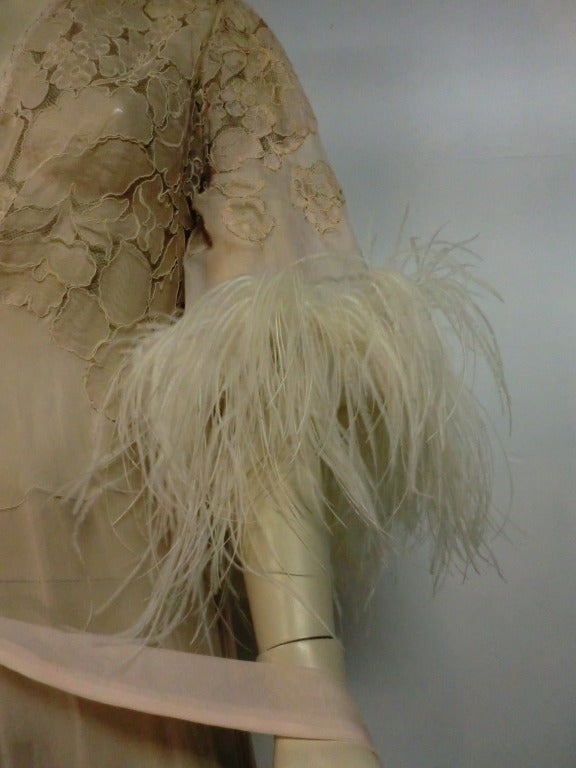 1920's Silk Lace and Chiffon Negligee w/ Ostrich Feather Trim 9