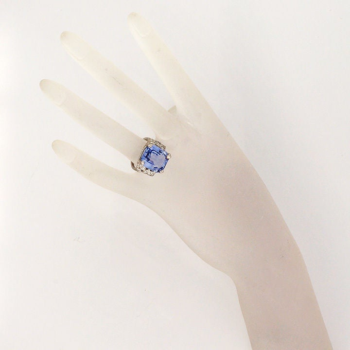 Natural Sapphire Diamond Bow Ring 5