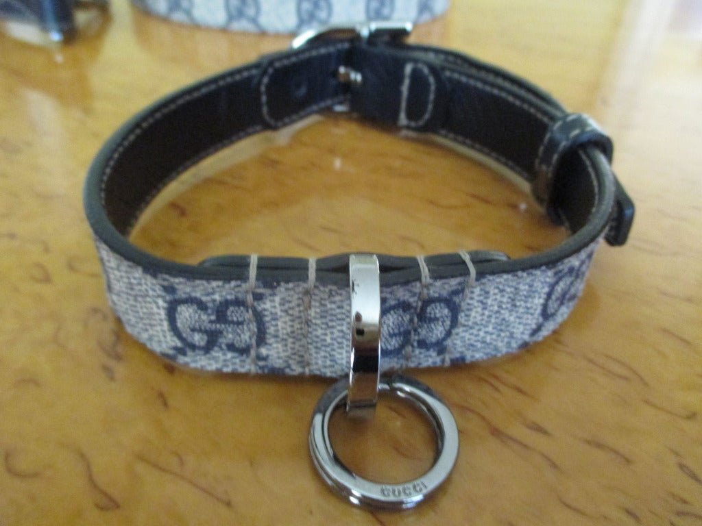 Quot Gucci Dog Quot Collar And Leash From Gucci At 1stdibs