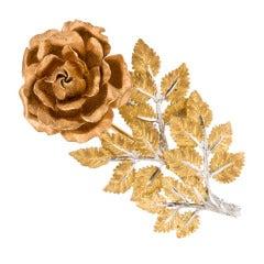 Buccellati Tri Color  Gold Rose Brooch Pin