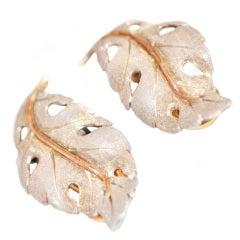 Mario Buccellati Baroque leaf earclips
