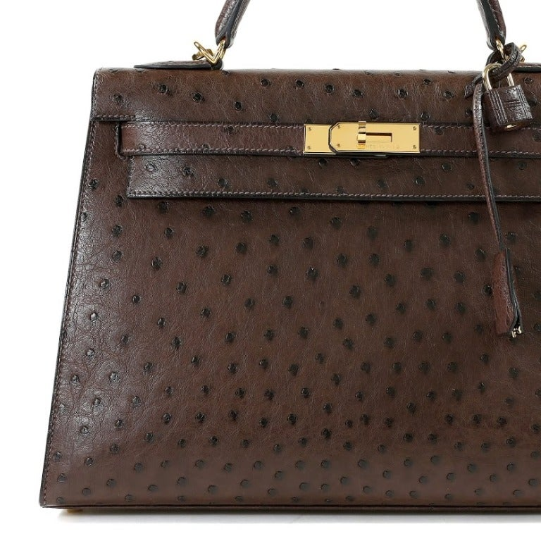 Hermes Chocolate Ostrich Kelly Bag at 1stdibs