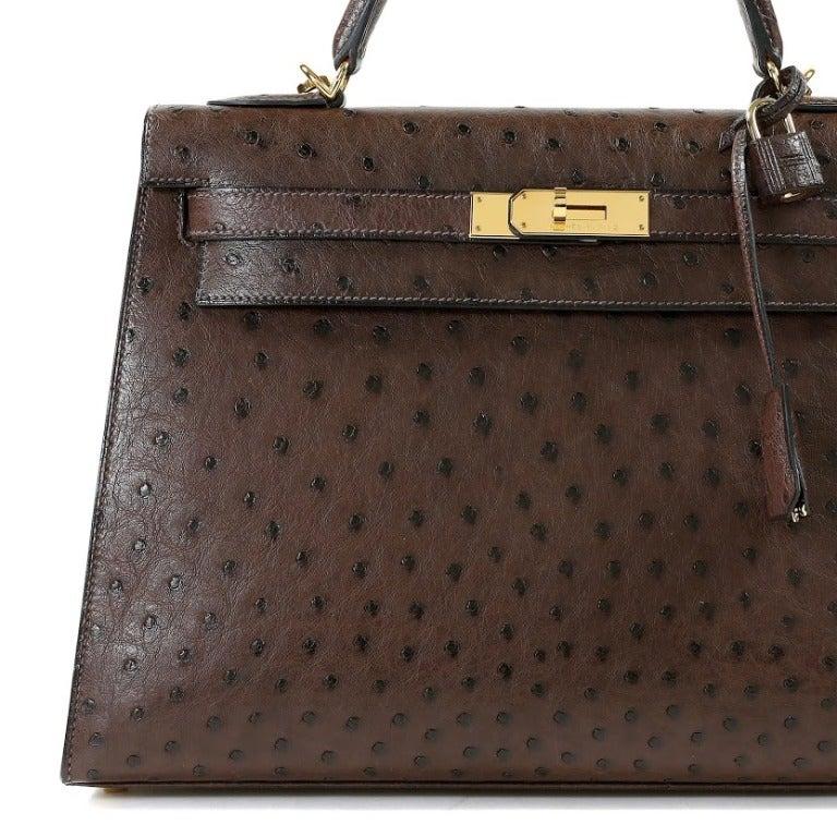 hermes ostrich bag