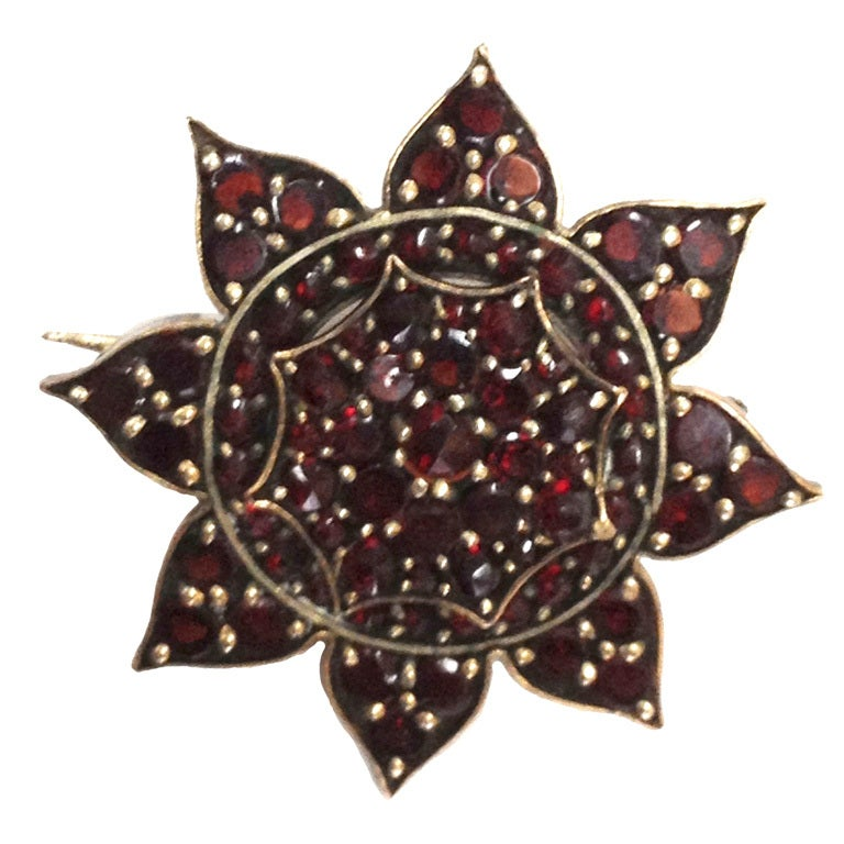 19th Century Bohemian Garnet Gold Pin Brooch