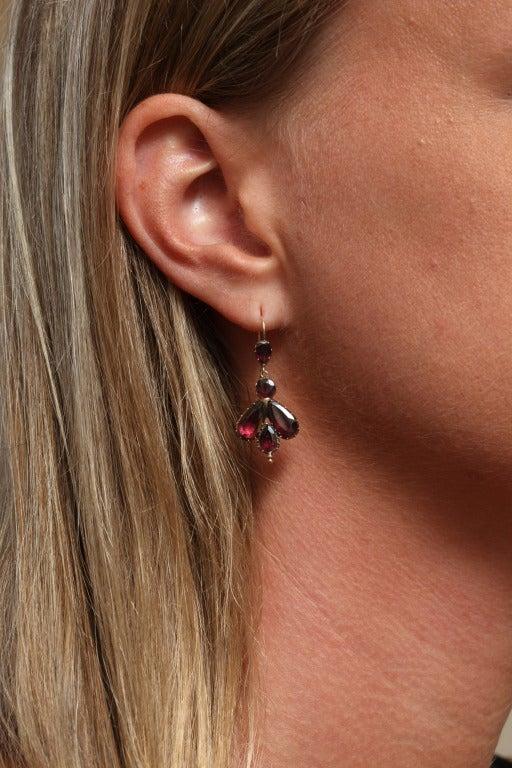 Early 19th Century Garnet Fly Earrings 6