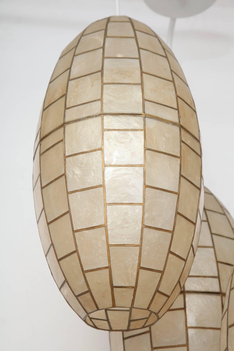 Translucent Shell and Metal Chandelier For Sale 3