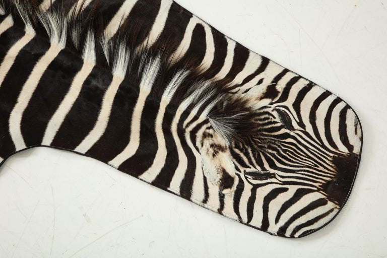 Decorative zebra hide rug. Trimmed with leather all around the edges and backed with wool fabric.