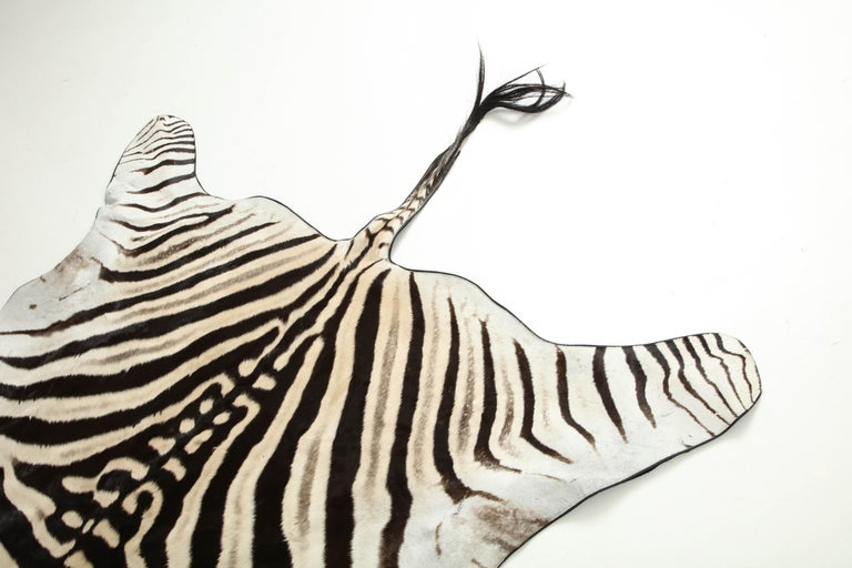 Zebra Hide Zebra Rug For Sale