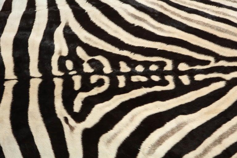 Zebra Rug For Sale 1
