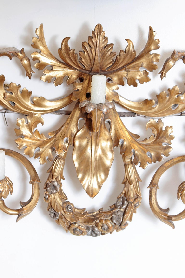 An oversized / large seven-arm gilt carved-wood and gesso wall sconce, gilded gold with silver accents, Baroque-style, undulating acanthus leaves swirls and curve to make the various candle arms, a floral wreath at centre bottom, large single