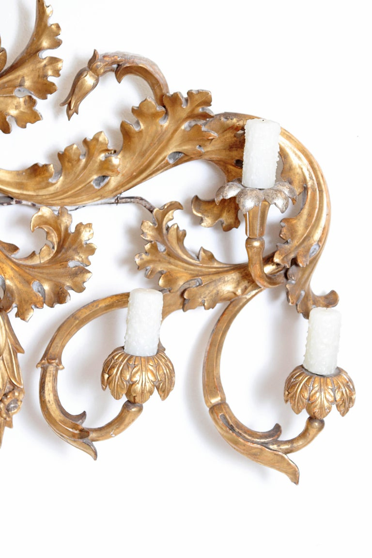 Oversized Italian Baroque Style Seven-Arm Gilt and Silvered Wood Wall Sconce In Good Condition For Sale In Dallas, TX