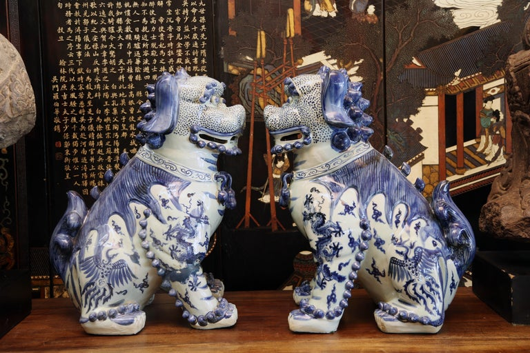 It is hard to find a Chinese household anywhere in the world, without the protection of of the ever present foo dogs. We need to be safe but wealthy also, this charming dogs shall assure you both wishes And never forget LUCK These charming dogs are
