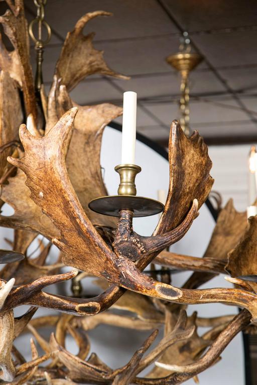 Fantastic twelve light caribou antler chandelier at 1stdibs hand crafted fantastic twelve light caribou antler chandelier for sale aloadofball Image collections