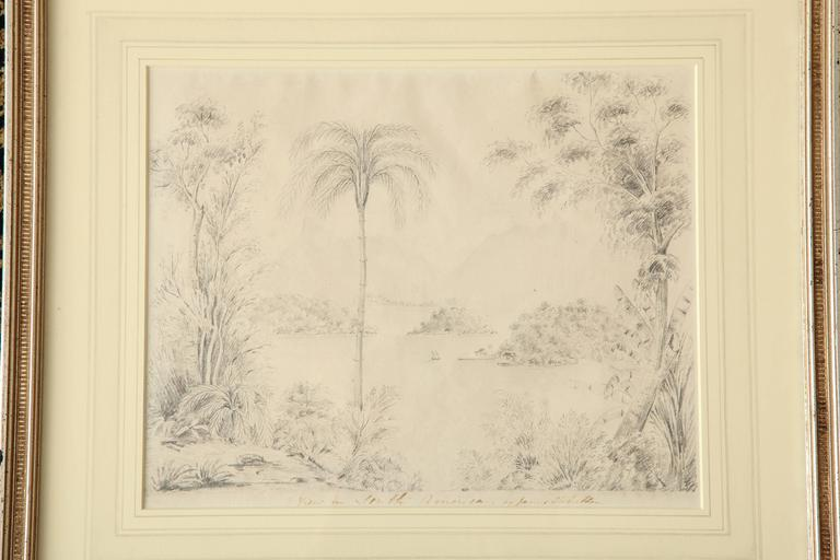 "Charming tropical riverscape with boats in the distance and a large palm tree in the foreground in pencil with caption ""View in South America by James Robertson"" handwritten in ink."