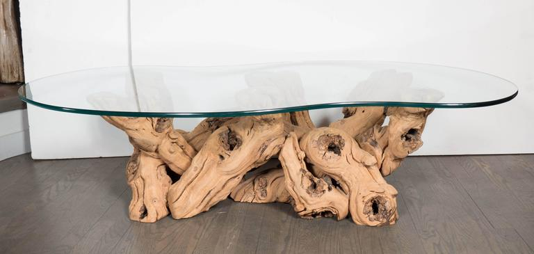 American Mid-Century Modern Organic Free-Form Driftwood Cocktail Table