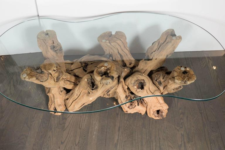 Mid-Century Modern Organic Free-Form Driftwood Cocktail Table In Excellent Condition In New York, NY