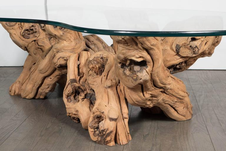 Mid-20th Century Mid-Century Modern Organic Free-Form Driftwood Cocktail Table