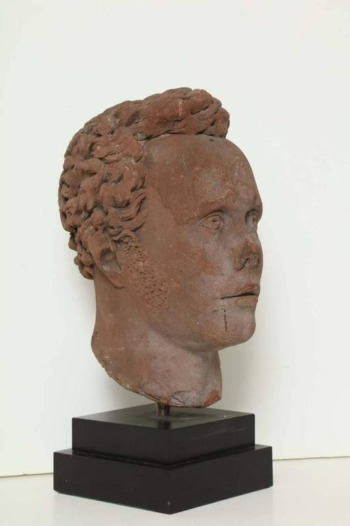 Early 19th Century Continental Carved Red Stone Bust 4