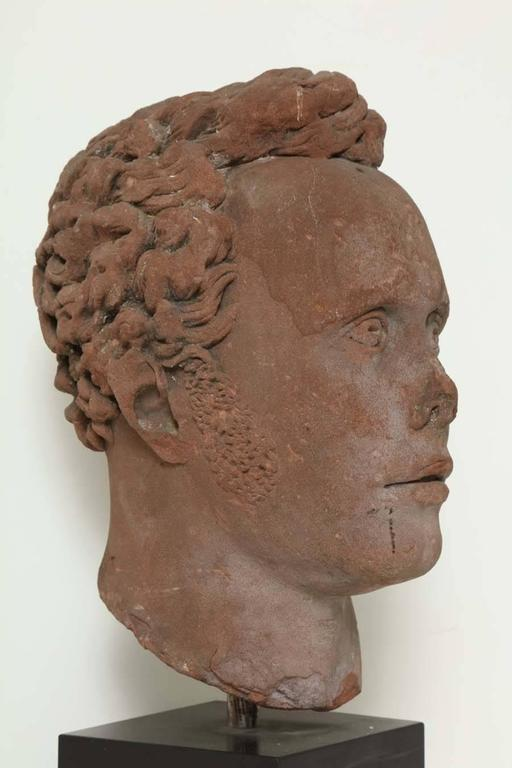 Early 19th Century Continental Carved Red Stone Bust 5