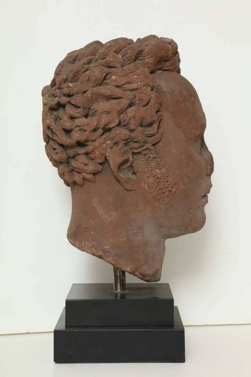 Early 19th Century Continental Carved Red Stone Bust 6