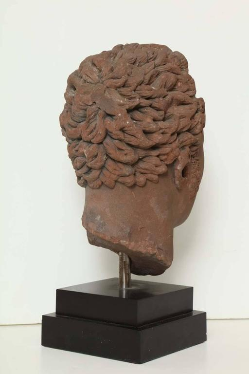Early 19th Century Continental Carved Red Stone Bust 7