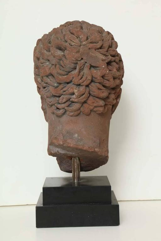 Early 19th Century Continental Carved Red Stone Bust 8
