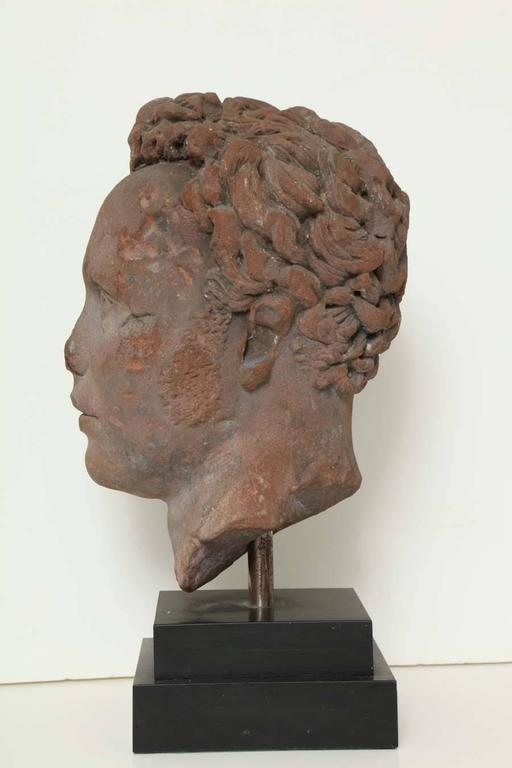 Early 19th Century Continental Carved Red Stone Bust 9