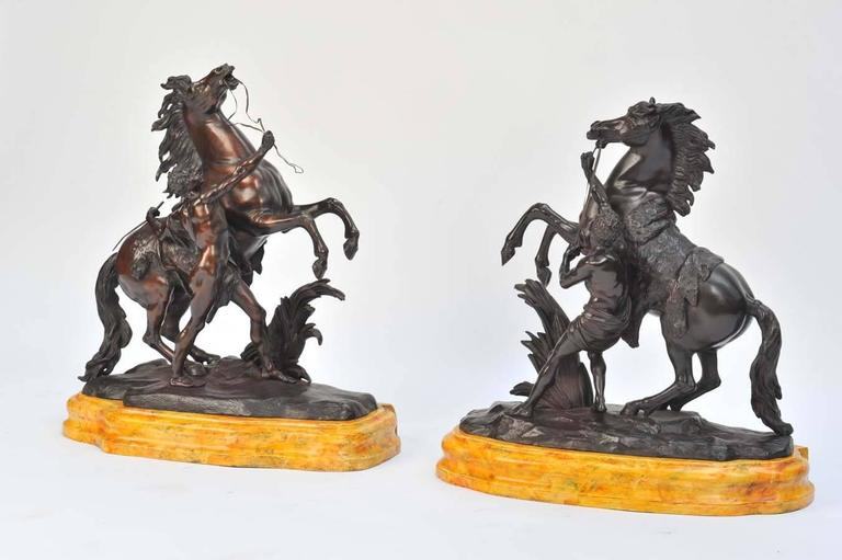 A very impressive pair of French bronze marley horses after Guillaume Coustou the elder 1677-1746. Mounted on faux Sienna marble bases.