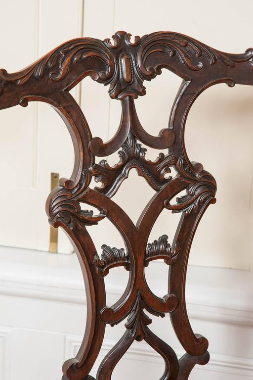 Mahogany Dining Chairs, 19th Century, Set of Ten For Sale 3