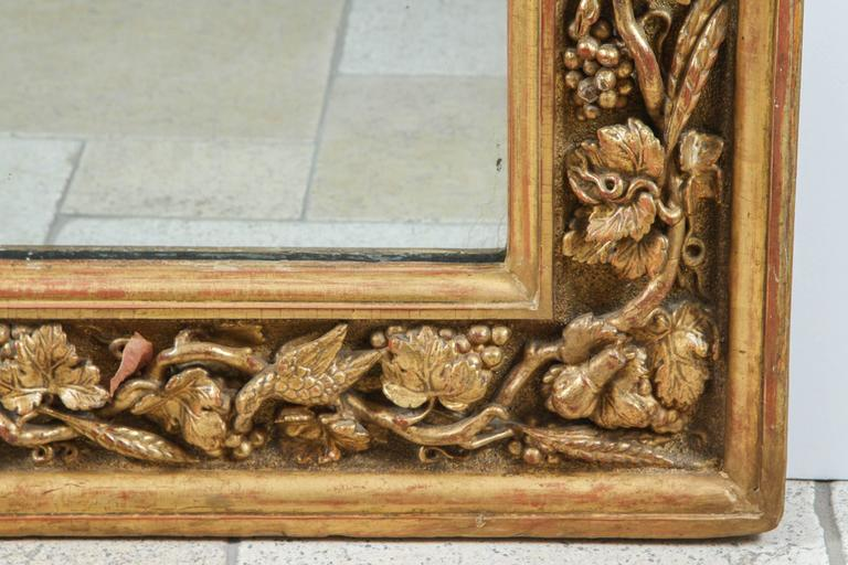 18th century English carved giltwood mirror with tree of life motif featuring snakes, snails and birds. The mirror interior measurements are: 42 inches wide x 61 inches high. There is a makers mark incised in the giltwood.