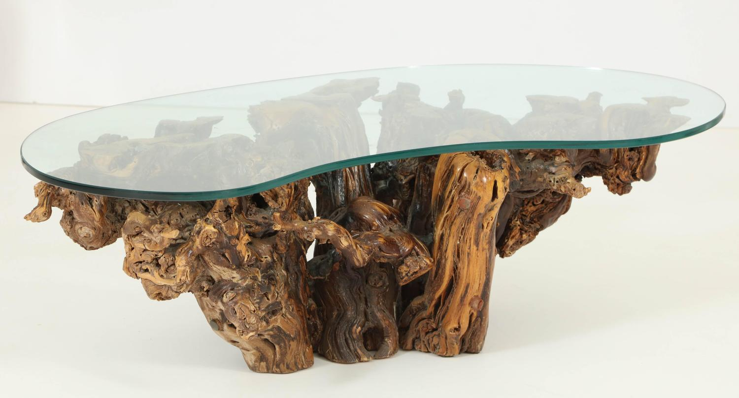 Organic Free Form Driftwood Coffee Table At 1stdibs