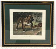 "Arthur Wardle ""England's Pride"" Hand Colored Print"