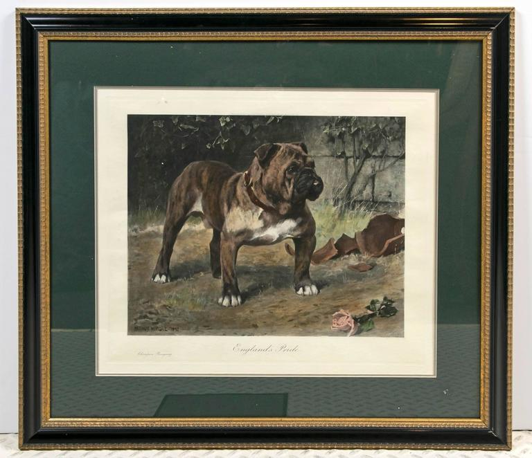This hand colored restrike etching art print of Arthur Wardle's
